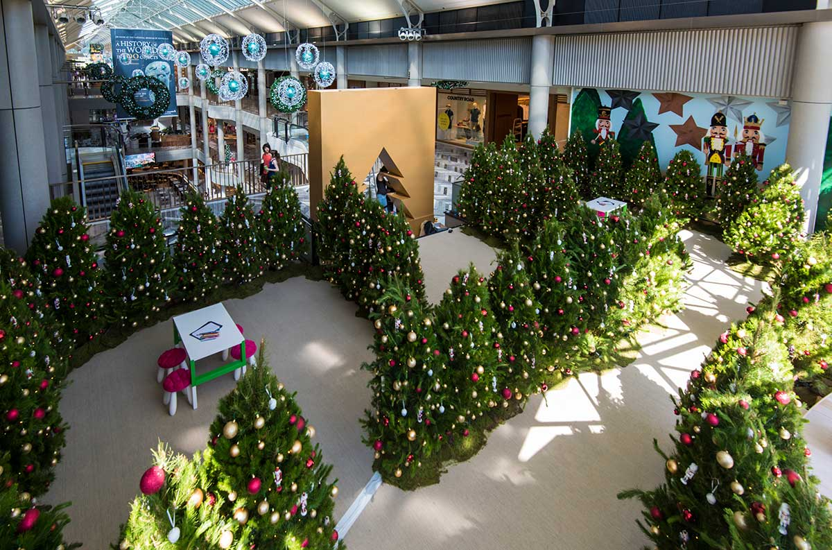 Gallery Santa Shaped Christmas Tree Farm Canberra Trees