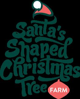 Santa Shaped Christmas Tree Farm Real Trees Experience True Canberra